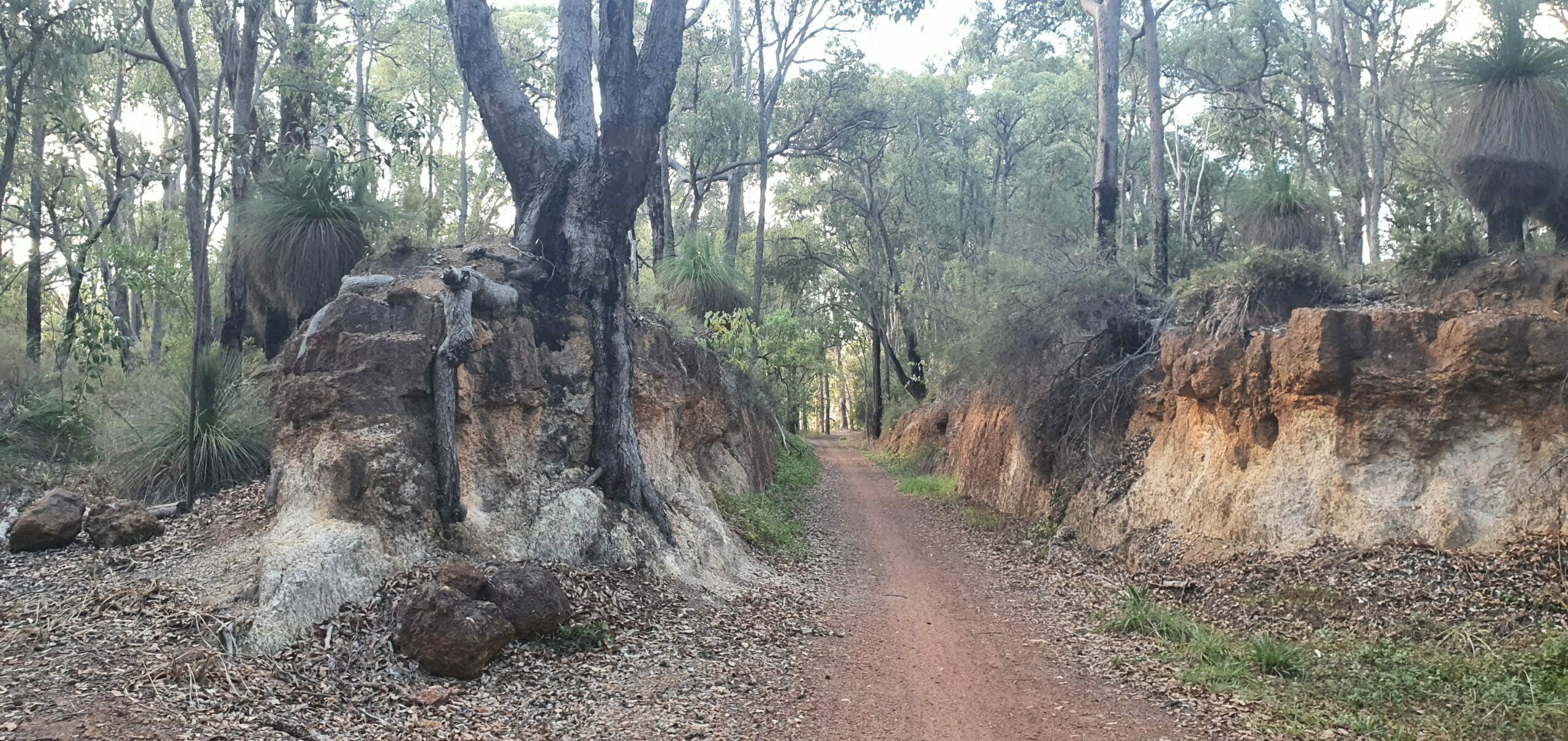 Sawyers Valley Heritage Trail