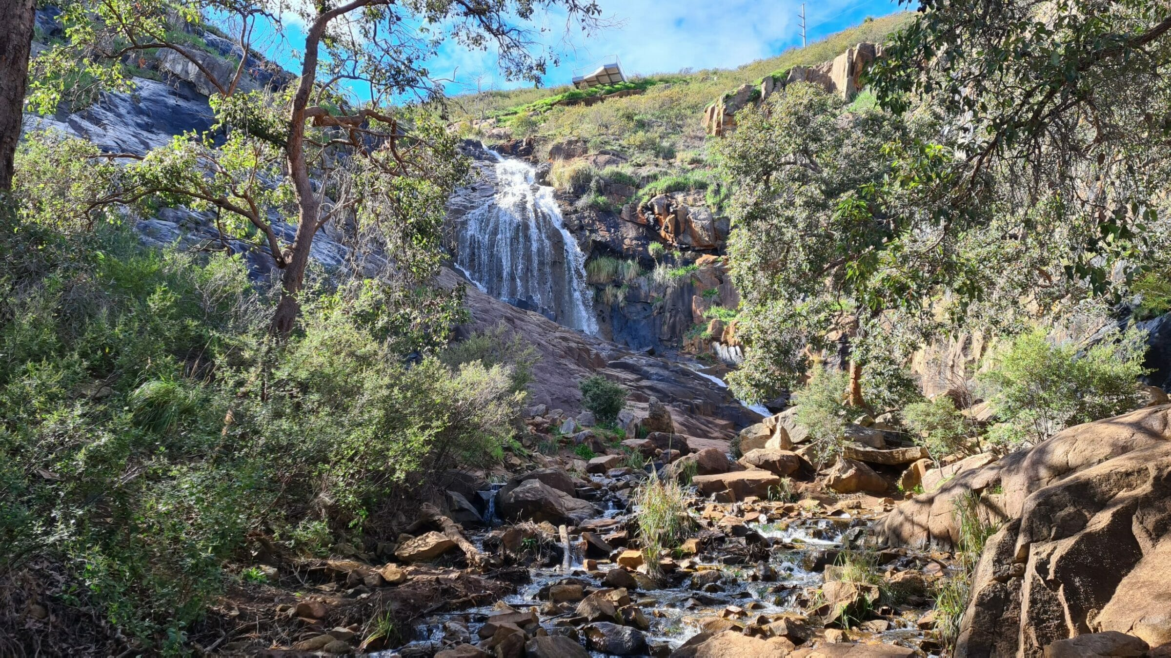 Falls & Gully Hiking Experience