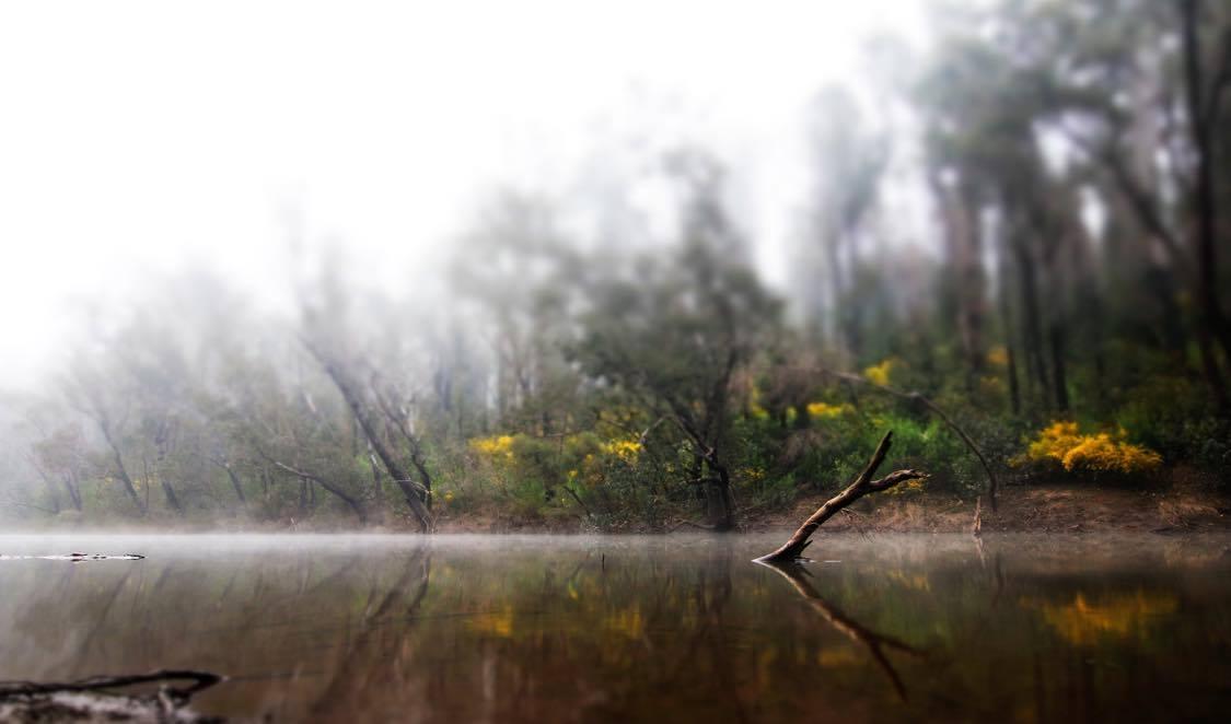 Mist Murray River