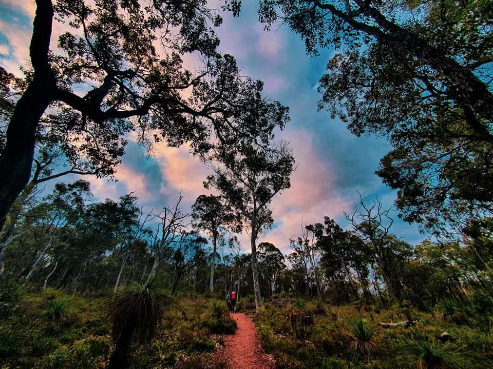 Starlight & Sparkling Hike – A Valentines Day Special Edition Experience