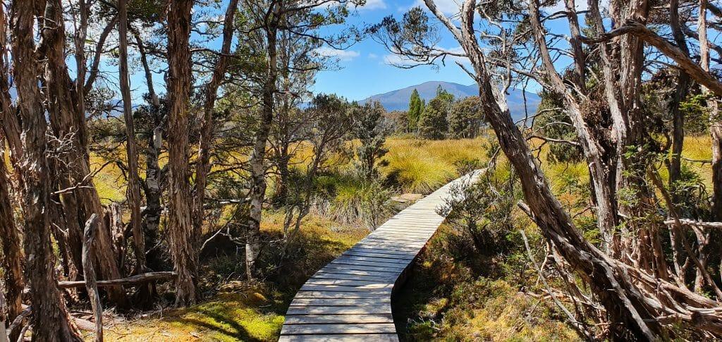 Marshlands Overland Track