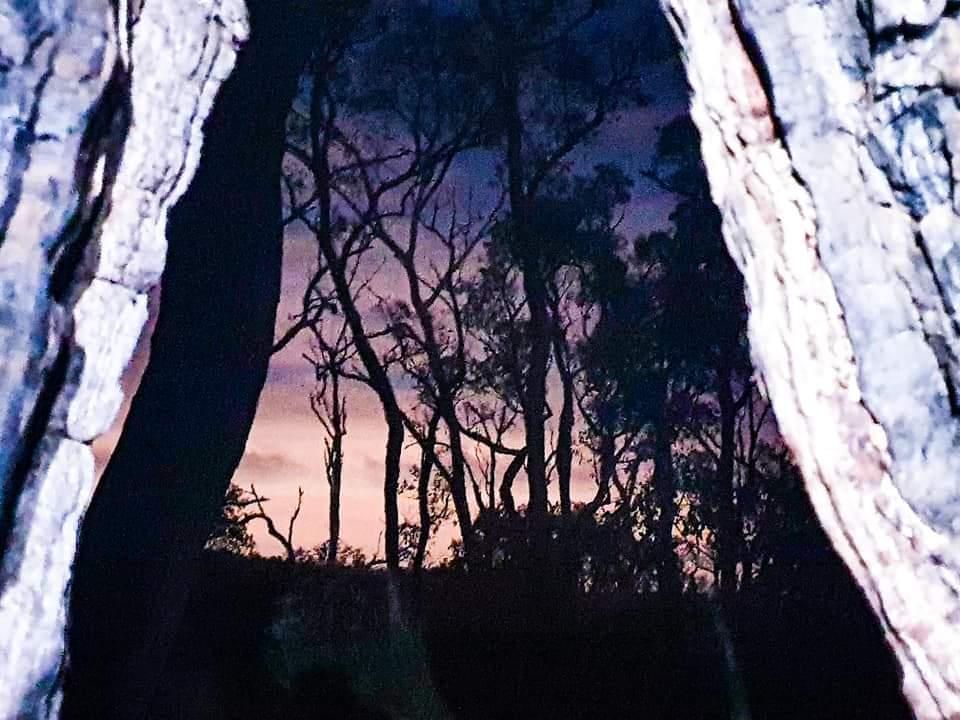 Twilight Hike