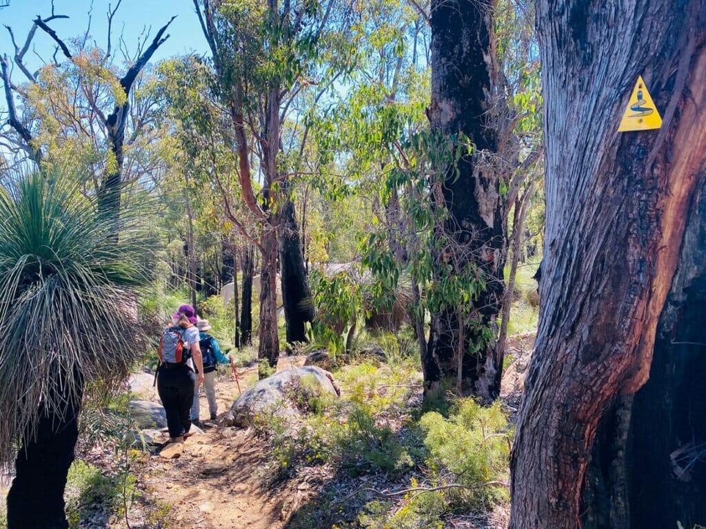 Discover the Bibbulmun Sullivan Rock to Mt Cooke Hiking Experience2