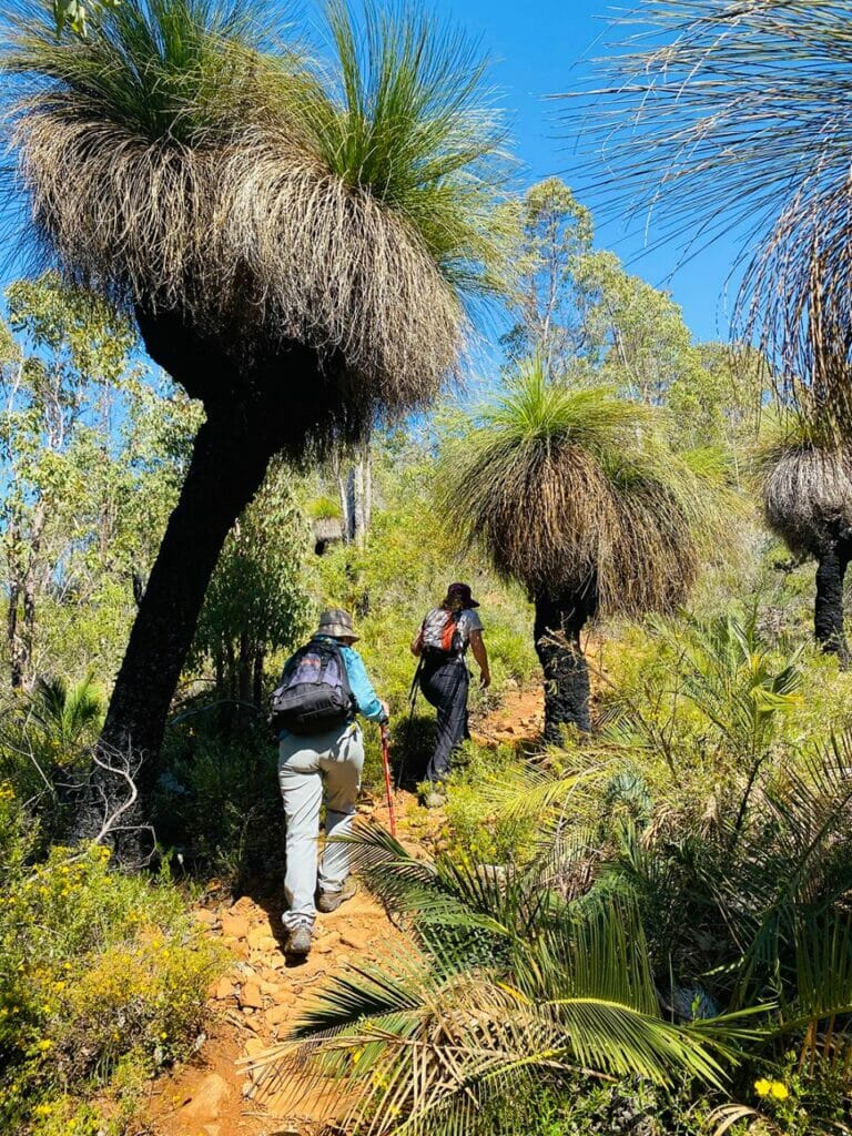 Discover the Bibbulmun Sullivan Rock to Mt Cooke Hiking Experience4