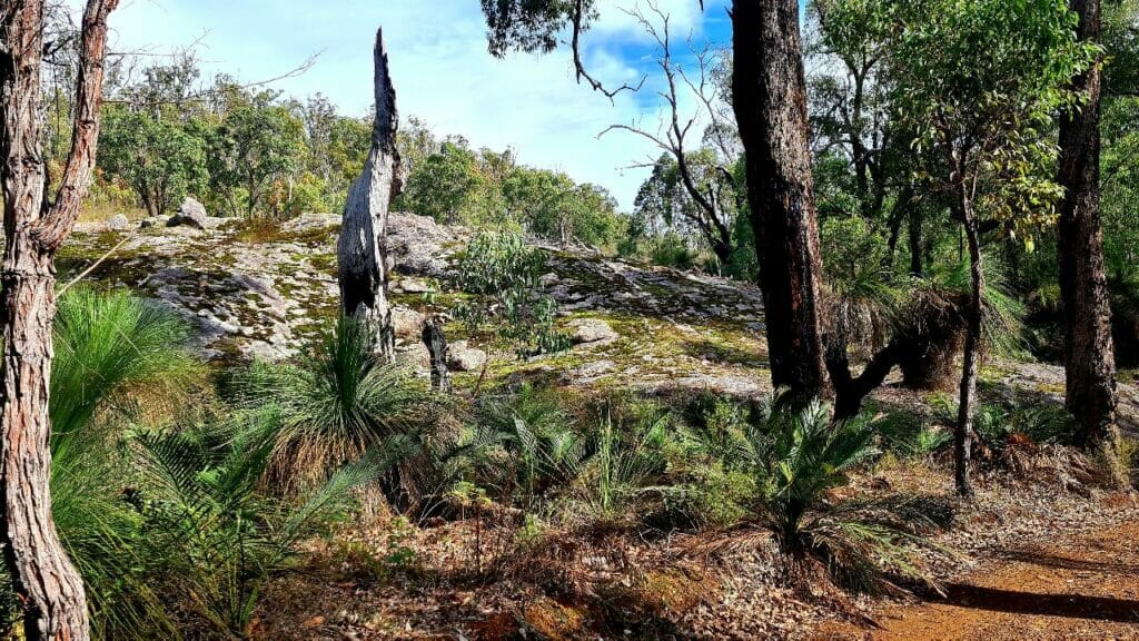 Dwellingup Trains Trails Woodfired Delights3