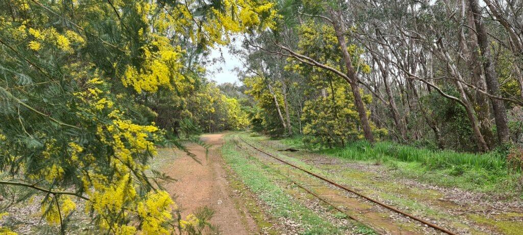 Dwellingup railway