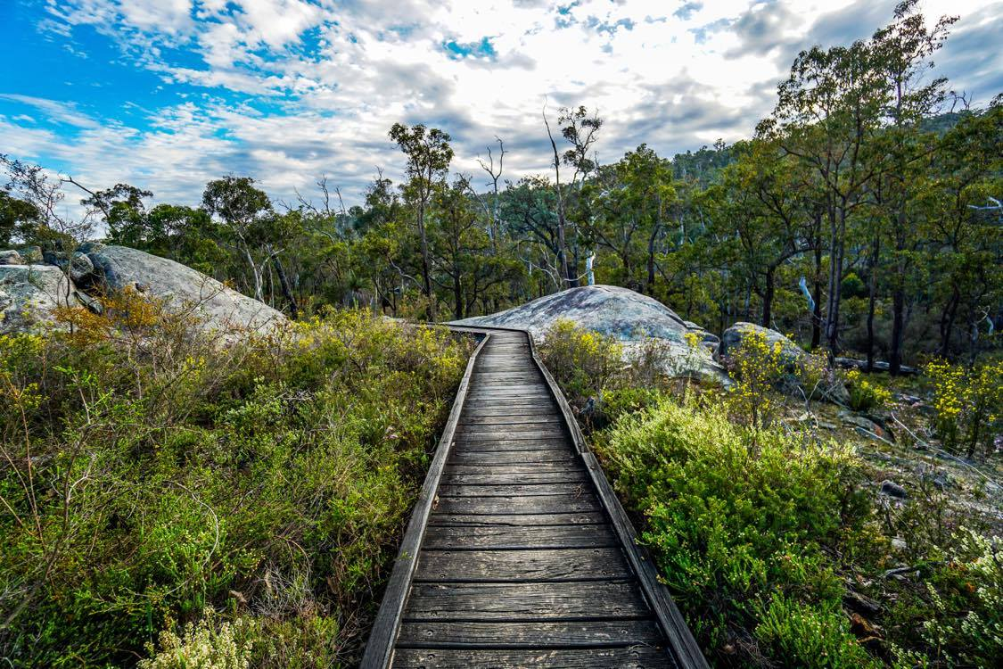 Numbat Trail Hiking Experience
