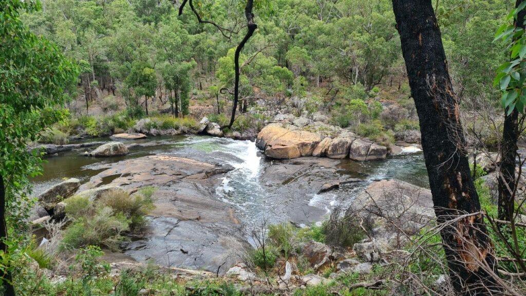 cascades collie river lg
